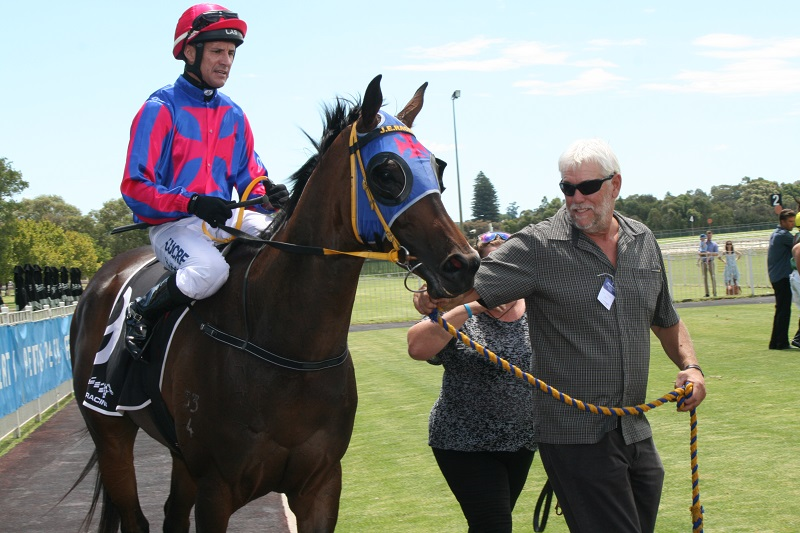 Friar Fox won the Penfolds Handicap (1600m) for trainer Justine Erkelens of Muchea. Picture: Anita McInnes